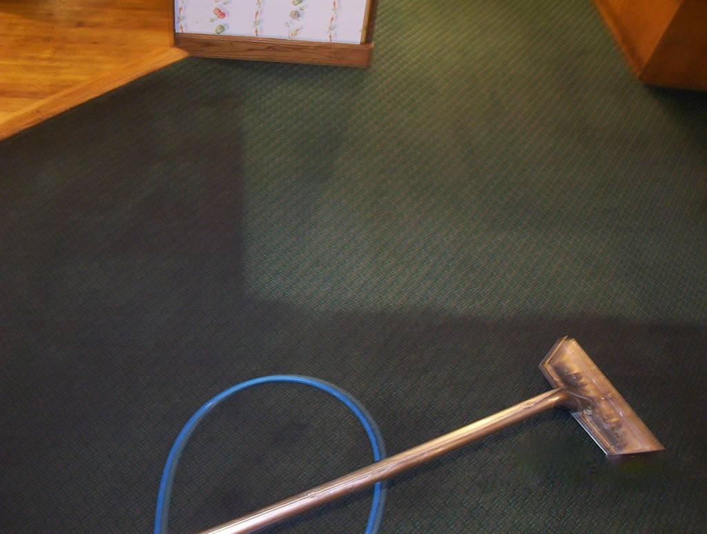 Cleaning Carpet in Springfield Ma