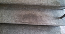 Carpet Cleaning steps in Springfield Ma