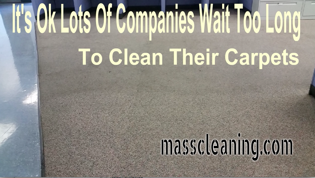 carpet cleaning springfield MA